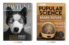 What would magazines look like if our furry friends could read?
