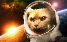 Major Tom to Ground Control by phyrinx.deviantart.com on @deviantART
