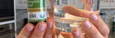 De gezondheidsvoordelen van oregano olie