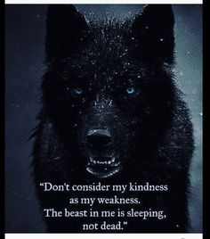 97 EXCLUSIVE wolf quotes that will leave you speechless # speechless . - 97 EXCLUSIVE wolf quotes that leave you speechless - True Quotes, Great Quotes, Quotes To Live By, Motivational Quotes, Inspirational Quotes, Quotes Quotes, Go Away Quotes, Ignore Me Quotes, Fight Quotes