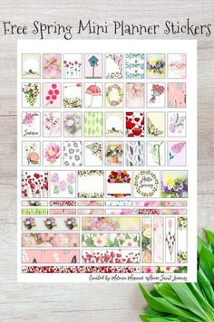 Free Printable Spring Planner Stickers for Mini Planners pastel themed accents, dividers and edges with flowers, umbrellas for April showers, poppies etc Printable Planner Stickers, Journal Stickers, Free Printables, Printable Tags, Happy Planner Kit, Free Planner, Planner Ideas, Bullet Journal, Washi