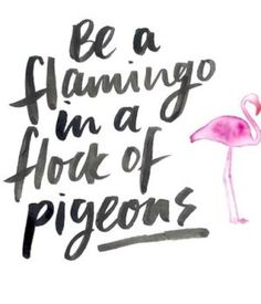 Selfie Quotes Be a flamingo in a flock of pigeorns Bio Instagram, Good Quotes For Instagram, Instagram Captions For Selfies, Beautiful Captions For Instagram, Sunset Quotes Instagram, Attitude Caption For Instagram, Instagram Fashion, The Words, Favorite Quotes
