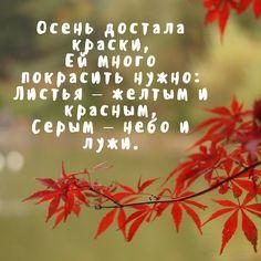 СЕНТЯБРЬ Осень достала краски, Ей много покрасить нужно: Листья – желтым и красным, Серым – небо и лужи.  ОКТЯБРЬ Дождь льет с самого утра, Льет как будто из ведра, …