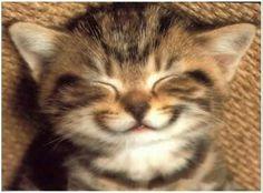 Happy *.*  #BetaAjudaBeta