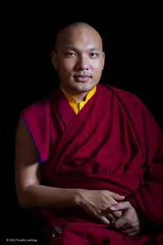 The role/biography of the current Karmapa