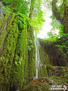 A small waterfall in #Mukhtara, al Chouf شلال صغير في #المختارة، #الشوف Photo by Rabih