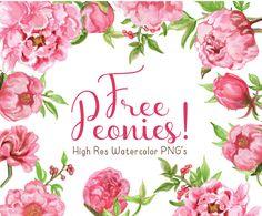212 best graphic freebies images on pinterest free watercolor rh pinterest com free flower clip art downloads free floral clipart designs