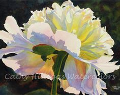 Backlit Beauty This is a quality giclee print made from an original watercolor painting by Cathy Hillegas. It depicts a white peony, dramatically lit from behind by the sun. The image is approximately 7.7 x 10 on 8.5 x 11 paper. It comes hand signed and numbered and is from an edition limited to 800. The photo shows how it will be signed (your number may be different). I usually place the numbers inside the image but, if you would like it to be numbered in the margin or on the back, just let…