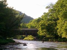 Fly fishing by covered bridge