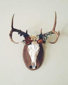 Deer crown ✨ European mount...