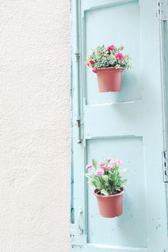 Macetas, flores, plantas.... primavera!
