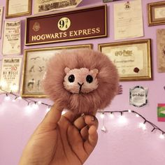Diy Pygmy Puff ♡ His name is Victor ♡ | We Heart It | diy, harry ...