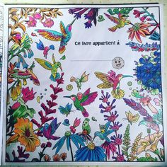 Love colour!! @kerbyrosanes #colouringbook #animorphia #pencilcolour #art #imagine #colourful #paint #create #imagine #kerbyrosanes #birds #flowers #creatures #zoomin #details #instaart #instaartist #instacolor