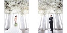 korea wedding Shoot Frim Picture, Photo, Photograph