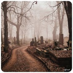 Cemetery in Hungary