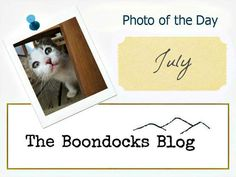 Photo of the Day Logo, Photo of the Day July 2017 theboondocksblog.com