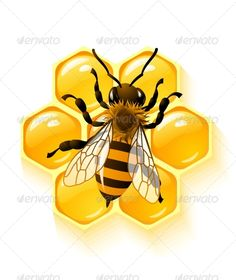 Vector bee and honeycombs Vector Clipart Royalty Free. Vector bee and honeycombs clip art vector EPS illustrations and images available to search from thousands of stock illustrators. Honey Logo, Bee Images, Buzz Bee, Frida Art, Bee Honeycomb, I Love Bees, Bee Art, Bee Crafts, Save The Bees