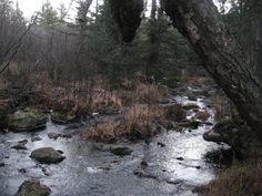 https://www.waterfallsofthekeweenaw.com/photo/upper-sturgeon-river-falls/general-chaotic-path-size-standard.jpg