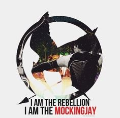 I am the mockingjay.