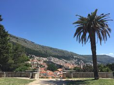 Gradac Park - game of Thrones filming location in Dubrovnik Filming Locations, Dubrovnik, Dolores Park, Game, Travel, Viajes, Venison, Gaming, Trips