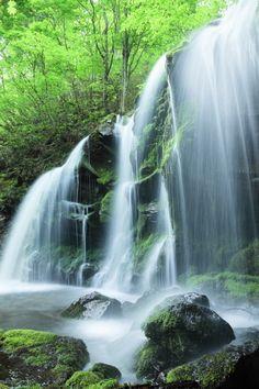 Sarubo Falls, Hyogo, Japan 猿壺の滝