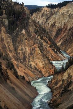 Amazing yellowstone