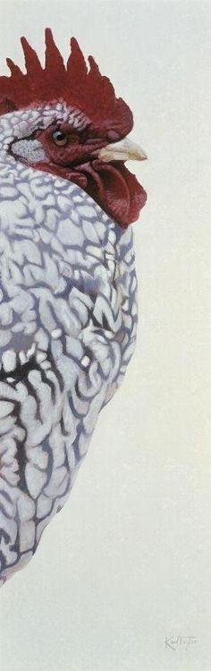 Bird Profile's - Karl Taylor Contemporary Art