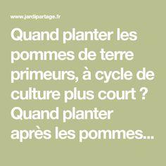 Quand planter les pommes de terre primeurs, à cycle de culture plus court ? Quand planter après les pommes de terre de conservation ? Comment protéger du froid?