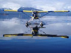 de Havilland Beaver with floats. Sea Plane, Float Plane, Bush Pilot, Bush Plane, Old Planes, Flying Boat, Aviation Art, Adventure, History
