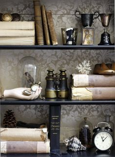 shelving beautifully backed with paper Cool hand holding old watch Trophies up top like yours