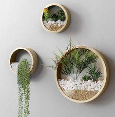 House Plants Decor, Plant Decor, Small Cactus, Hanging Planters, Wall Planters, Succulent Wall, Plant Wall, Fall Home Decor, Succulents