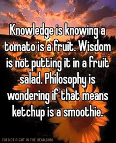 And common sense is knowing that ketchup is not a damn smoothie.