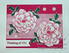 Paper Pumpkin - April 2019 - Sentimental Rose.  Click on link to see all of my alternative Sentimental Rose PP Cards. Stampin Up Paper Pumpkin, Pumpkin Cards, Butterflies, Alternative, Card Making, Rose, Link, Flowers, How To Make