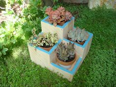 """Flower planter, flower pot, garden box, wood, tabletop size, 4 compartments for various plants and flowers: """"Blue Jewel"""" on Etsy, $59.00"""