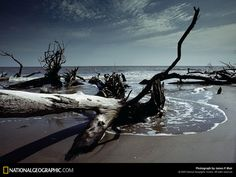 National Geographic Photography | Amazing National Geographic 037 wallpapers and stock photos
