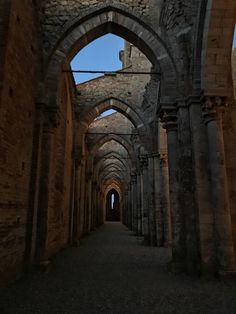 Tuscany, Abbazia di San Galgano.  Si narra che la leggenda della Spada nella roccia nacque proprio qui, tra questi filari di volte.