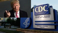 Image result for Report: Trump Bans 'Transgender,' 'Fetus,' 'Science-Based' From CDC Documents
