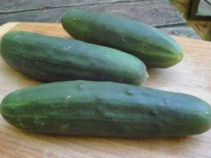Dark-green with Great slicer & salad variety. Resistant to downy mildew,mosaic virus & leaf spot Cucumber Seeds, How To Cook Zucchini, Cooking Zucchini, Pork Tenderloin Oven, Juicy Fruit, Downy, Lombok, Amazing Gardens, Tips