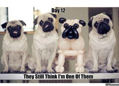 OMD! This took me a minute...lol!