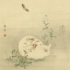 Cat And Butterfly  睡猫図 (酔猫胡蝶図) | ink and color painting on silk scroll | Kansai Mori