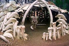 Reconstruction of a paleolithic mammoth bone house found in Ukraine.