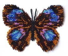 Butterfly Thaumantis Splendens Beading Pattern at Bead-Patterns.com