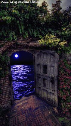 """"""" La mer était d'une chaude teinte lilas avec un chemin d'or pour la lune. """" (Vladimir Vladimirovitch Nabokov, écrivain américain d'origine russe)"""