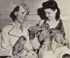 Clown and Showgirl | vintage circus photo of a clown bottle feeding some lion cubs 1930s ...