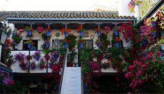 Enesta ciudad española incluso las paredes transpiran primavera