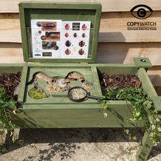 Minibeast Study Garden/Seat picture