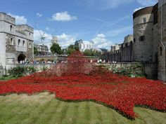 Ceramic poppies: Thousands sold at Tower of London to raise funds for armed forces charities - Home News - UK - The Independent