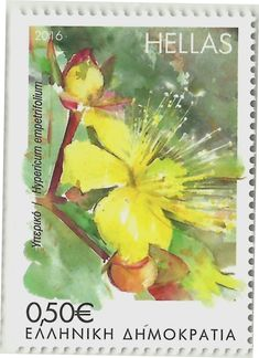 Stamps Greece 2016 - Blooming Herbs of the Greek Islands - Stamp: Hypericum empetrifolium 15 December, Postage Stamp Art, Greek Islands, Wild Flowers, Flora, Flower Stamp, Painting, Collection, Design