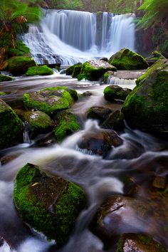 Horseshoe Falls Tasmania.                                                                                                                                                     More