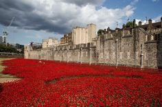 Blood Swept Lands and Seas of Red by Paul Cummins features thousands of ceramic poppies pouring out of the Tower of London. The poppies are for Remembrance Day, Nov. 11, to mark the centenary of the First World War, there will eventually be one ceramic flower placed in the historic fortress's dry moat for each of the 888,246 British and Commonwealth soldiers killed in the conflict.  http://www.mirror.co.uk